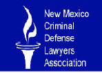 Criminal defense lawyer